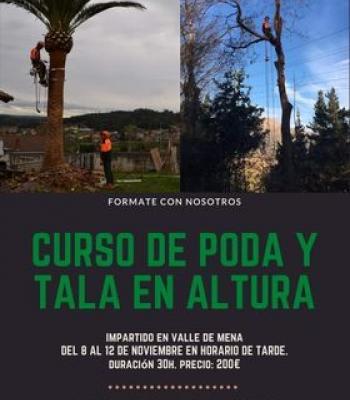 Curso de Poda y Tala en Altura.