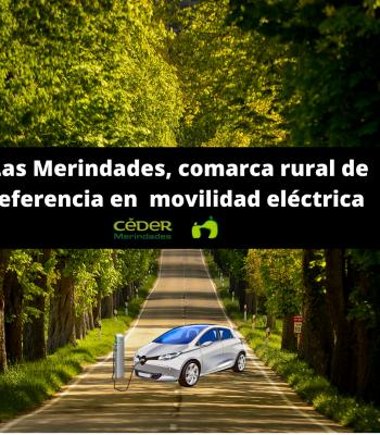 El CEDER Merindades y los ayuntamientos de la comarca dan un....