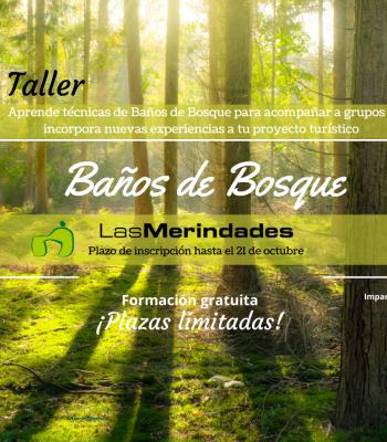 Taller: Baños de Bosque e interpretación de la naturaleza.